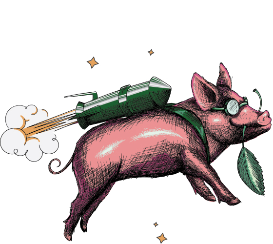 Illustration of a flying pig with a rocket on its back